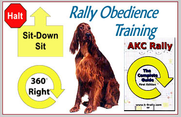 Rally Obedience Training - South Mountain Dog Training